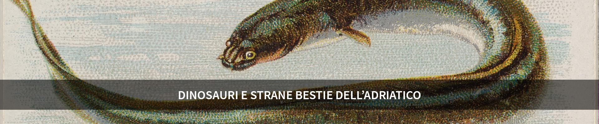 Dinosauri e strane bestie dell'Adriatico -