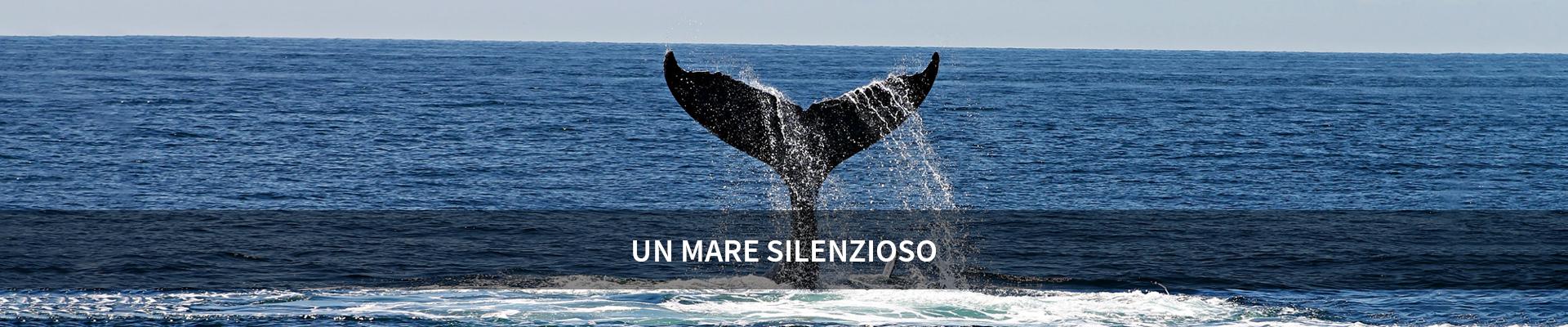 Un mare silenzioso -