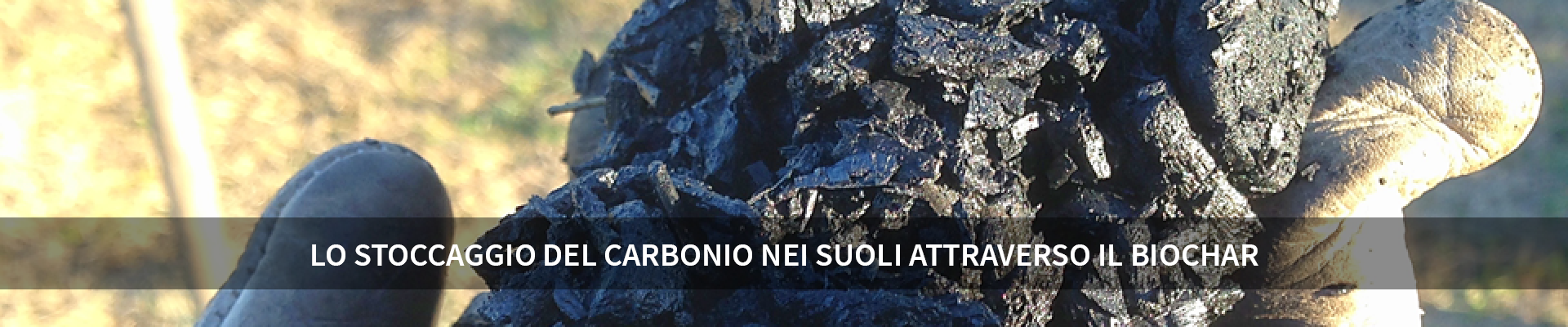 Lo stoccaggio del carbonio nei suoli attraverso il biochar -