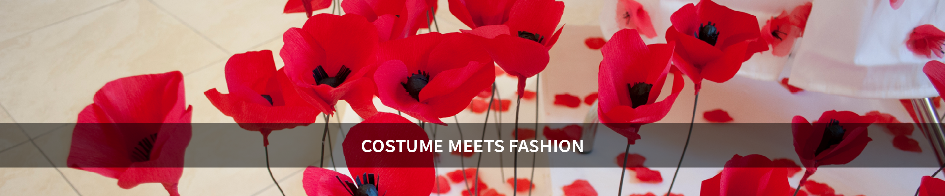 Costume meets fashion -